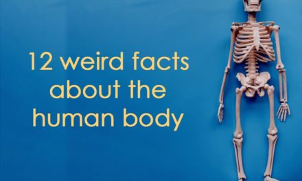 12 Weird Facts About The Human Body
